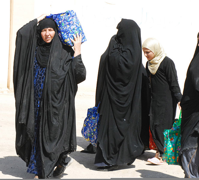 Understanding the Problems in Iraq's Shi'i Draft Personal Status Law