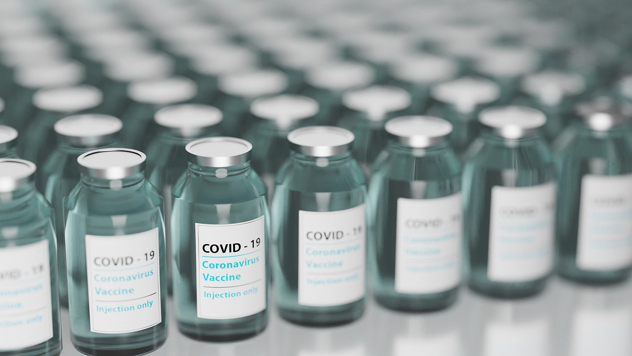 Bosnia and Herzegovina's Legal Responsibility for Failing to Procure COVID-19 Vaccines