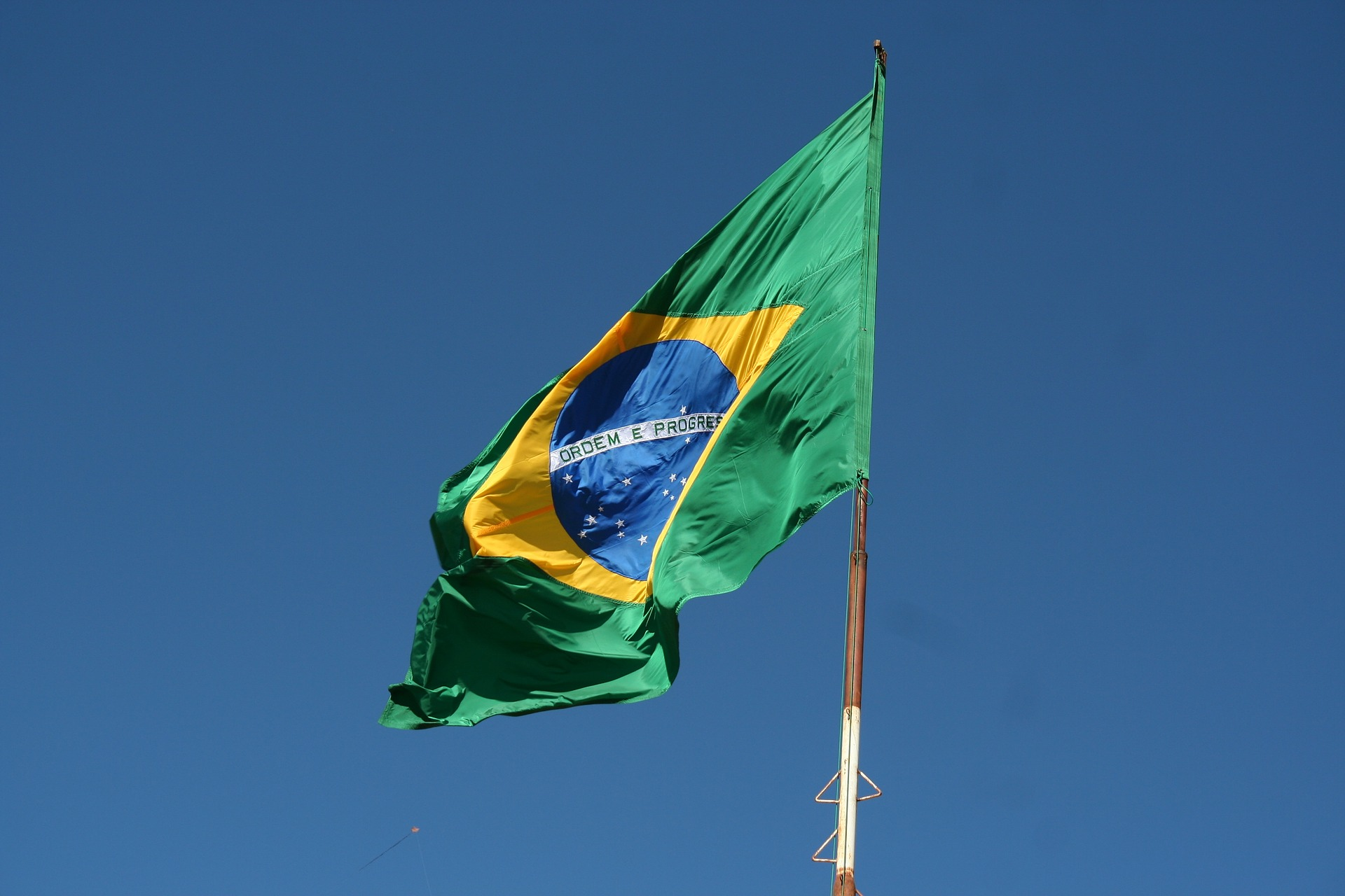 Encouraging Insurrection, Parliamentary Immunity and the Defense of Institutional Safeguards in Brazil