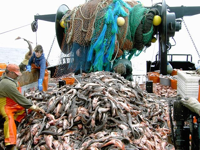 EU Legal Advisor Says Fisheries Agreement with Morocco is
