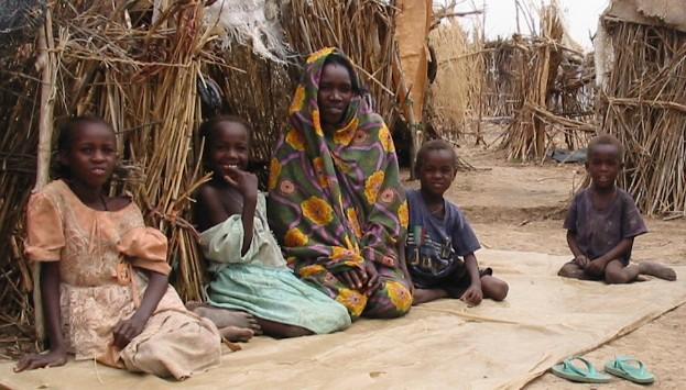 ICC prosecutor urges UN action in Darfur