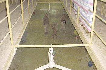 Federal appeals court revives Abu Ghraib torture lawsuit