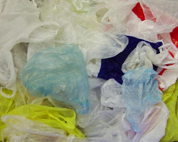 California Legislature Bans Plastic Grocery Bags