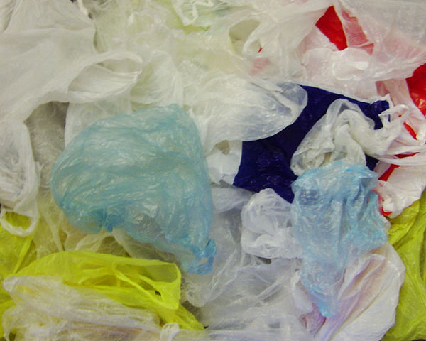 California governor signs bill banning plastic bags
