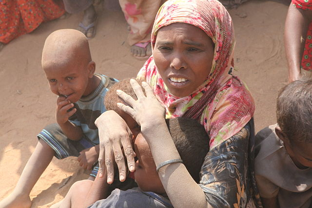 Somalia prime minister urges US banks to resume money transfers