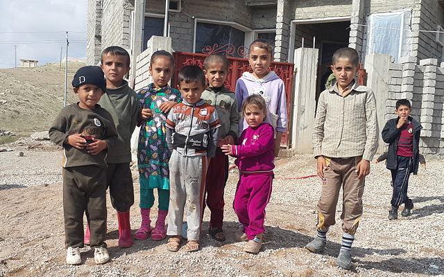 US Holocaust Museum supports Iraq Yazidi community genocide claim against Islamic State