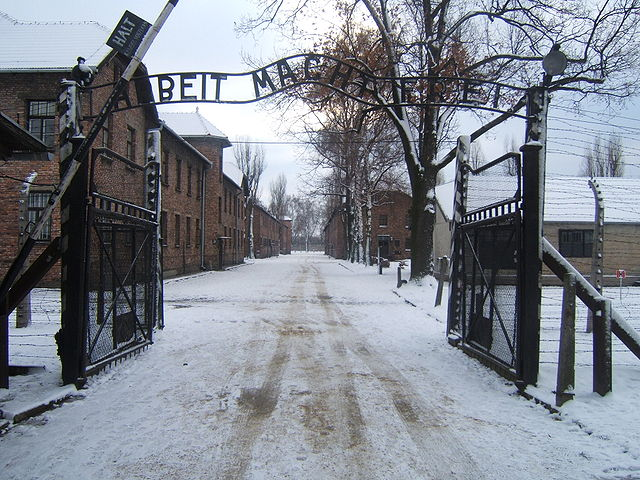Germany court rules accused Auschwitz paramedic too sick for trial