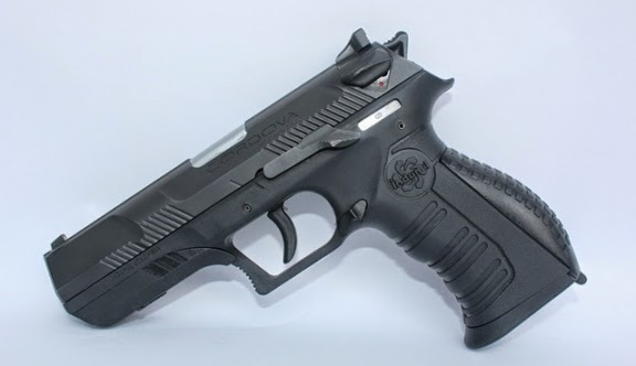 Virginia governor vetoes gun bills