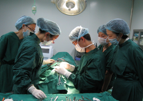 China continues to harvest organs of prisoners: report