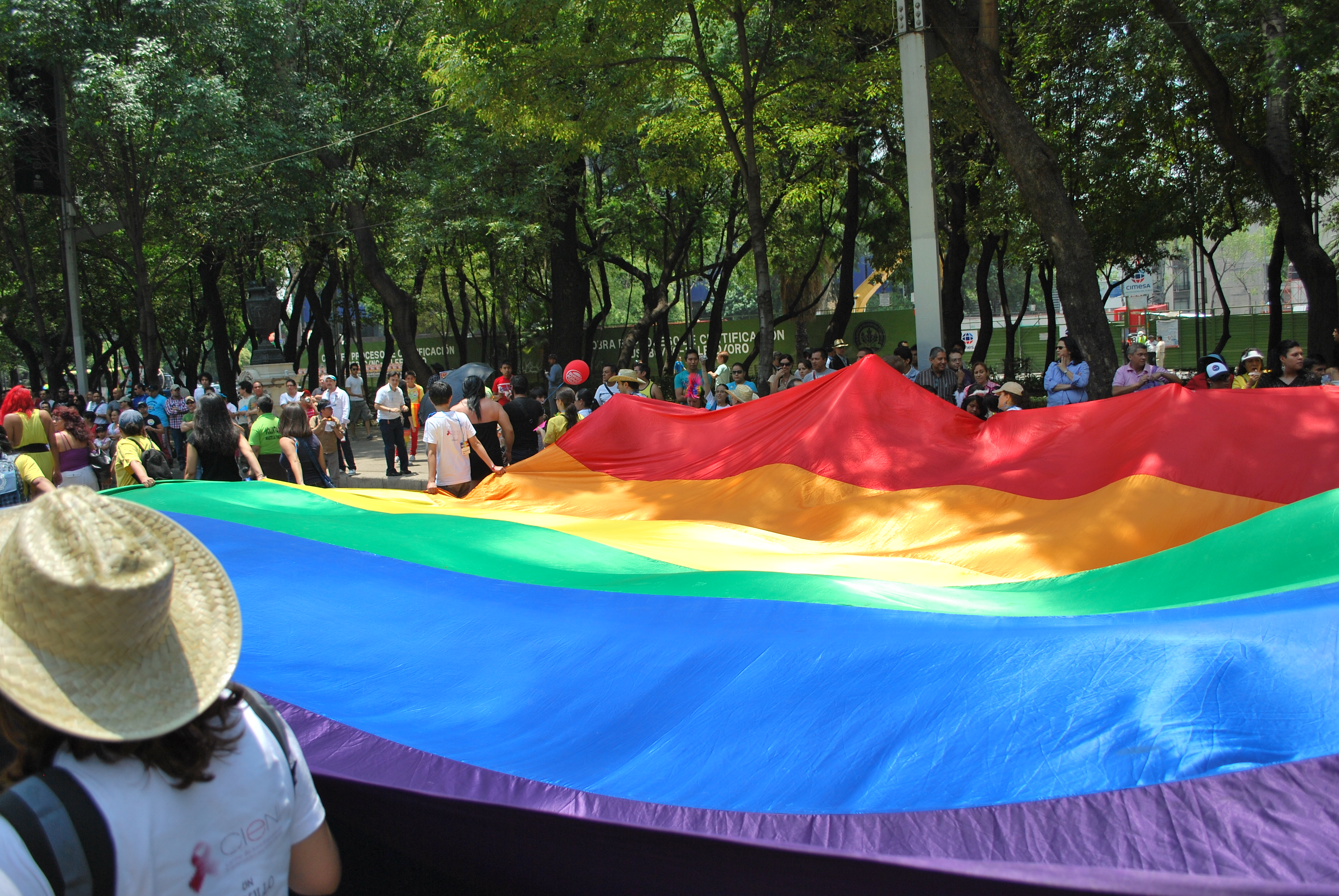 Thousands march to protest same-sex marriage in Mexico