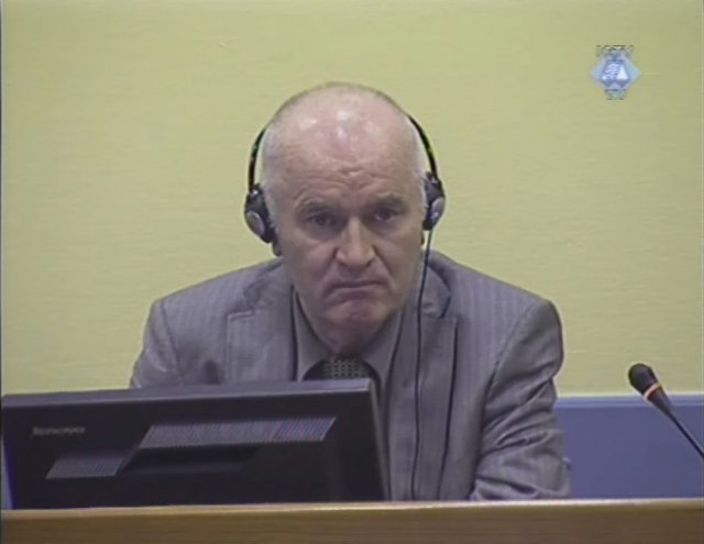 UN court hears oral arguments in Ratko Mladić appeal