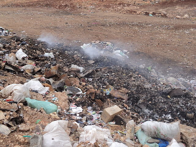 garbage pollution effects