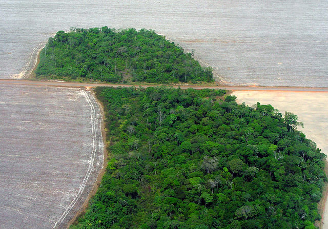 Colombia citizens file first ever climate change litigation in Latin America