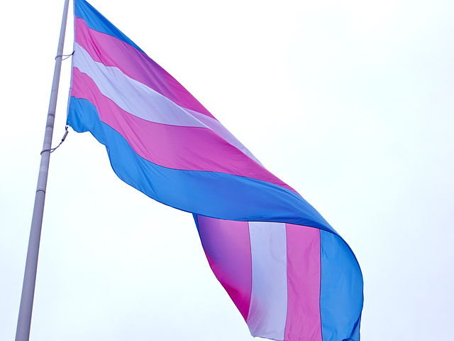 Transgender individuals sue Alabama over driver's license policy
