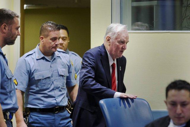 Ratko Mladić appeals war crimes conviction