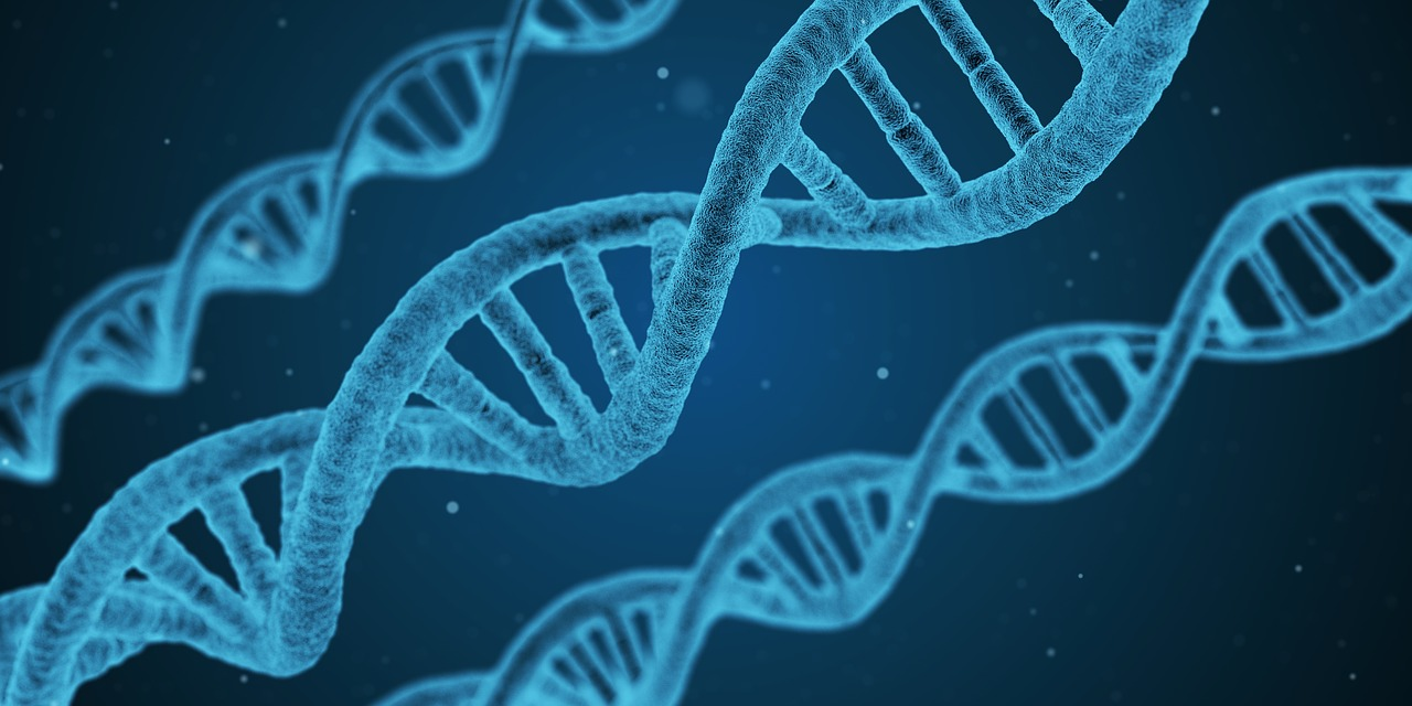 ECJ rules genome editing is genetic engineering