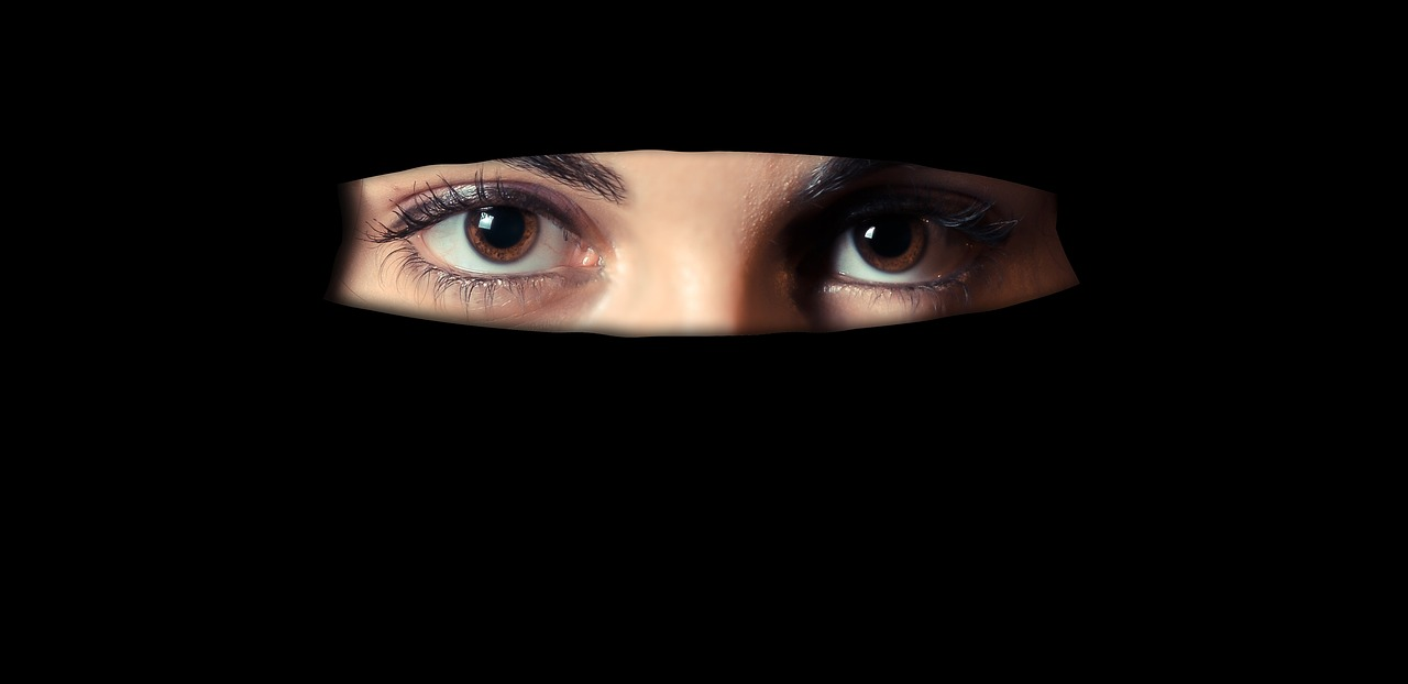 France niqab ban violates human rights: UN committee