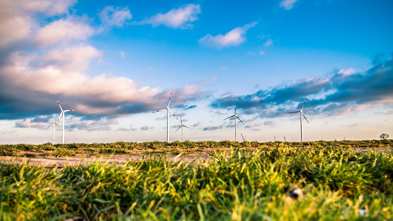 Clean energy measures suffer significant ballot losses