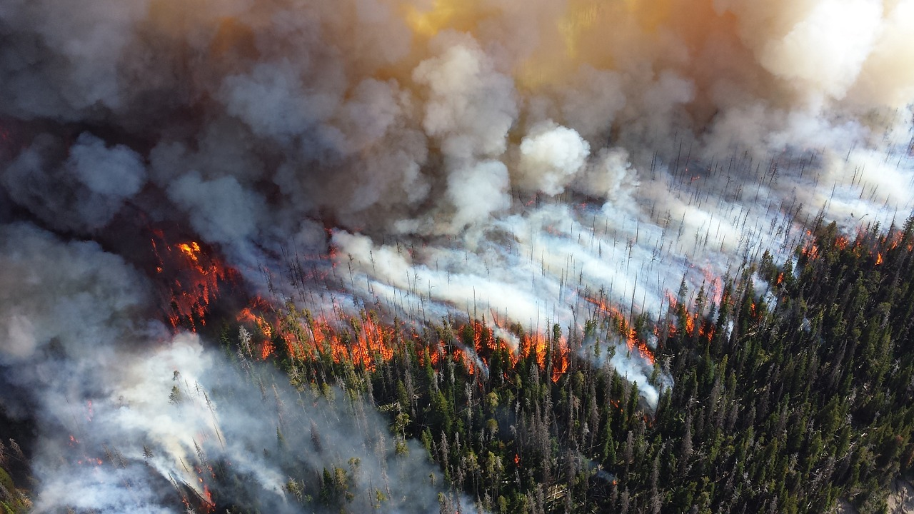 PG&E argues wildfire prevention court order would cost up to $150 billion