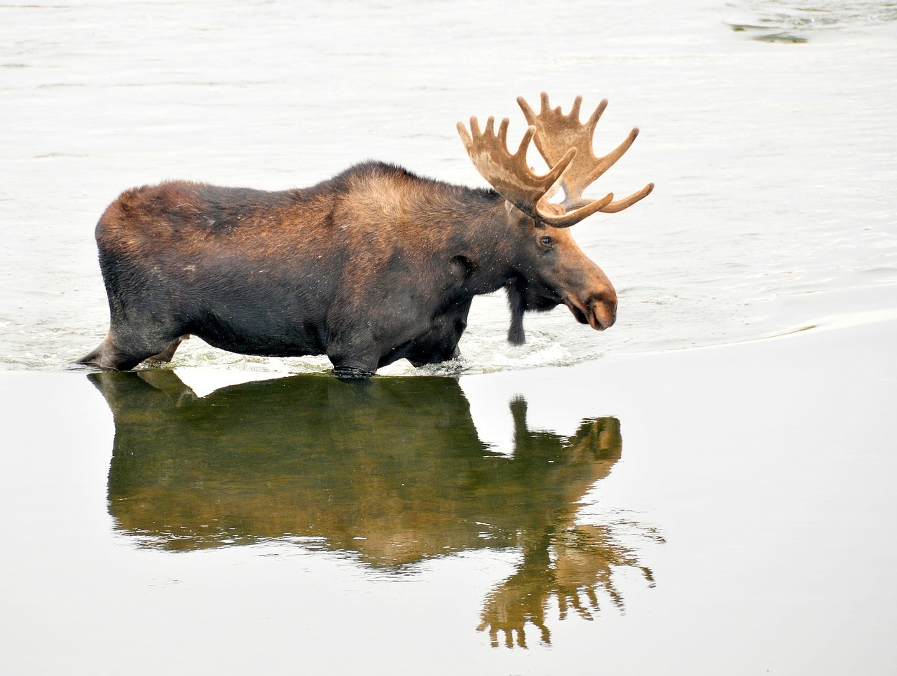 Supreme Court rules Alaskan river not under purview of National Park Service