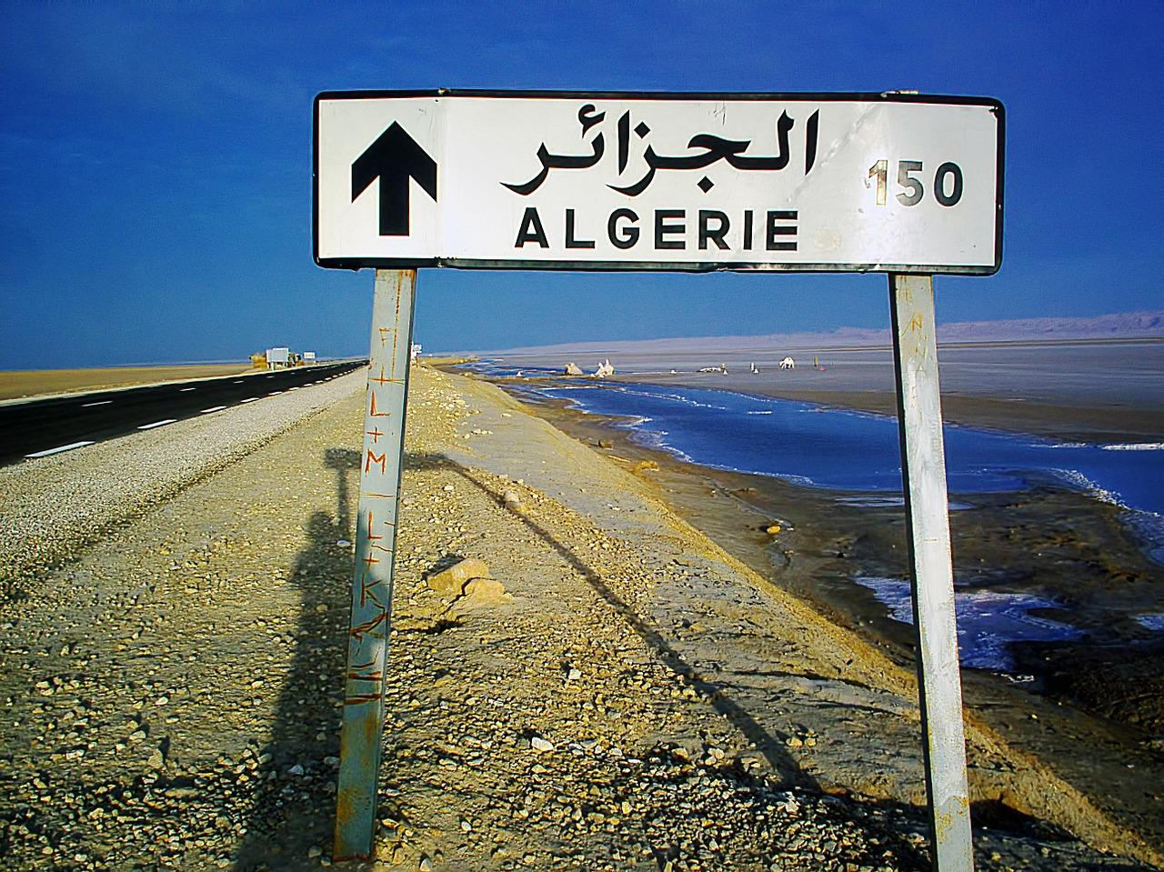 Algeria votes to approve constitutional reforms