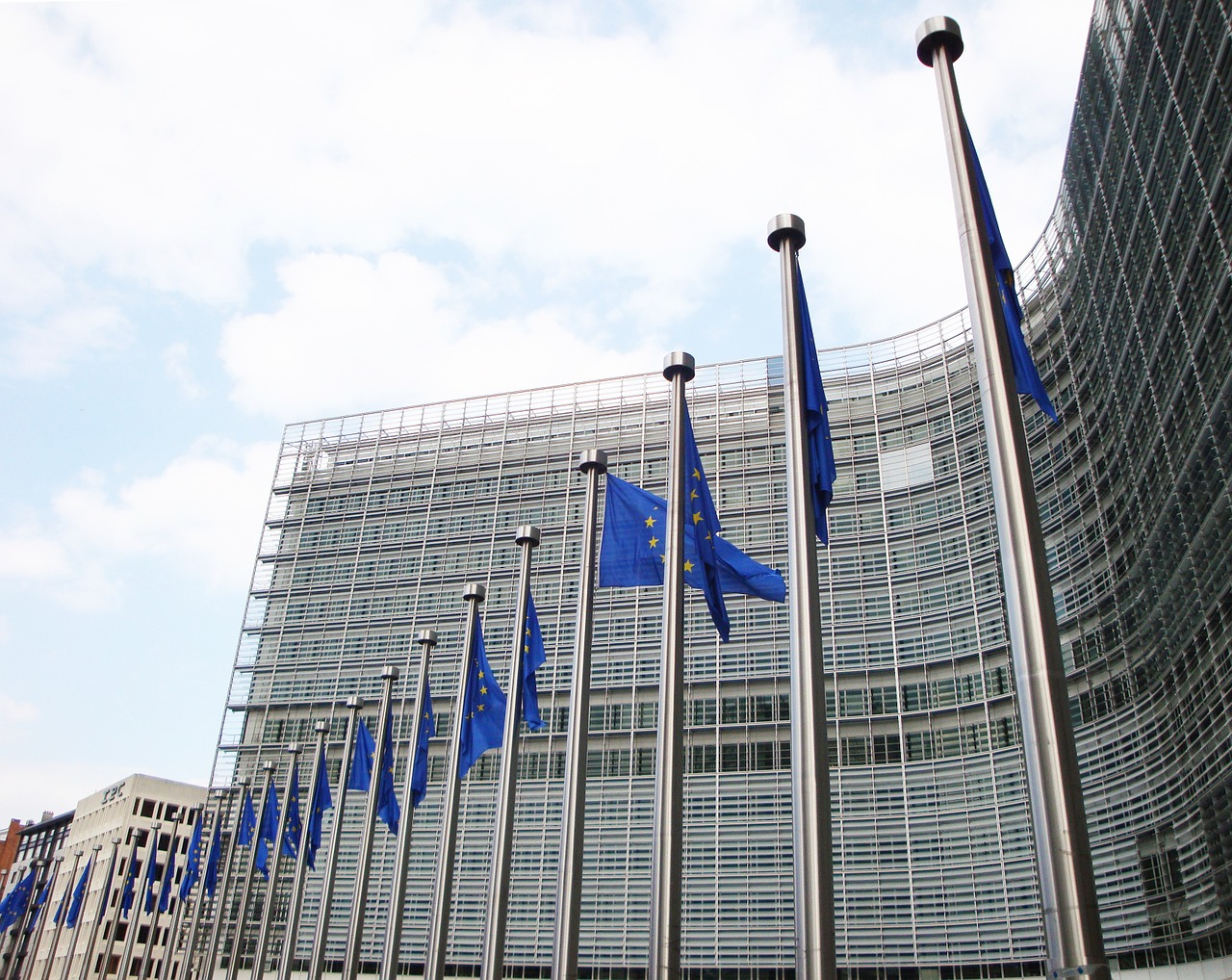 EU adopts Annual Human Rights Report
