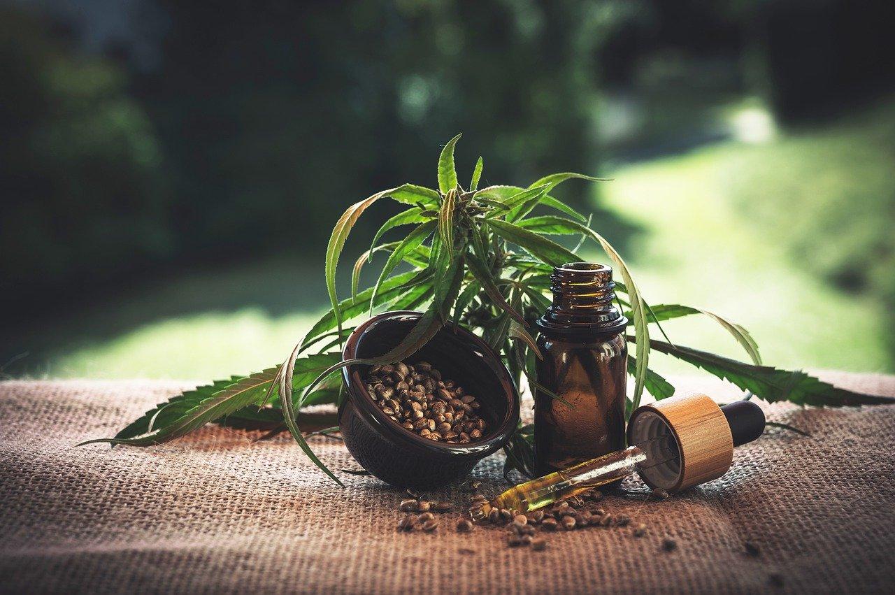 Panama legalizes medical marijuana use