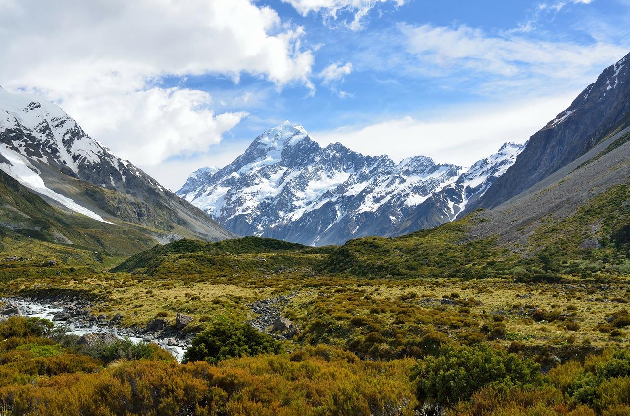 New Zealand Parliament passes zero carbon bill