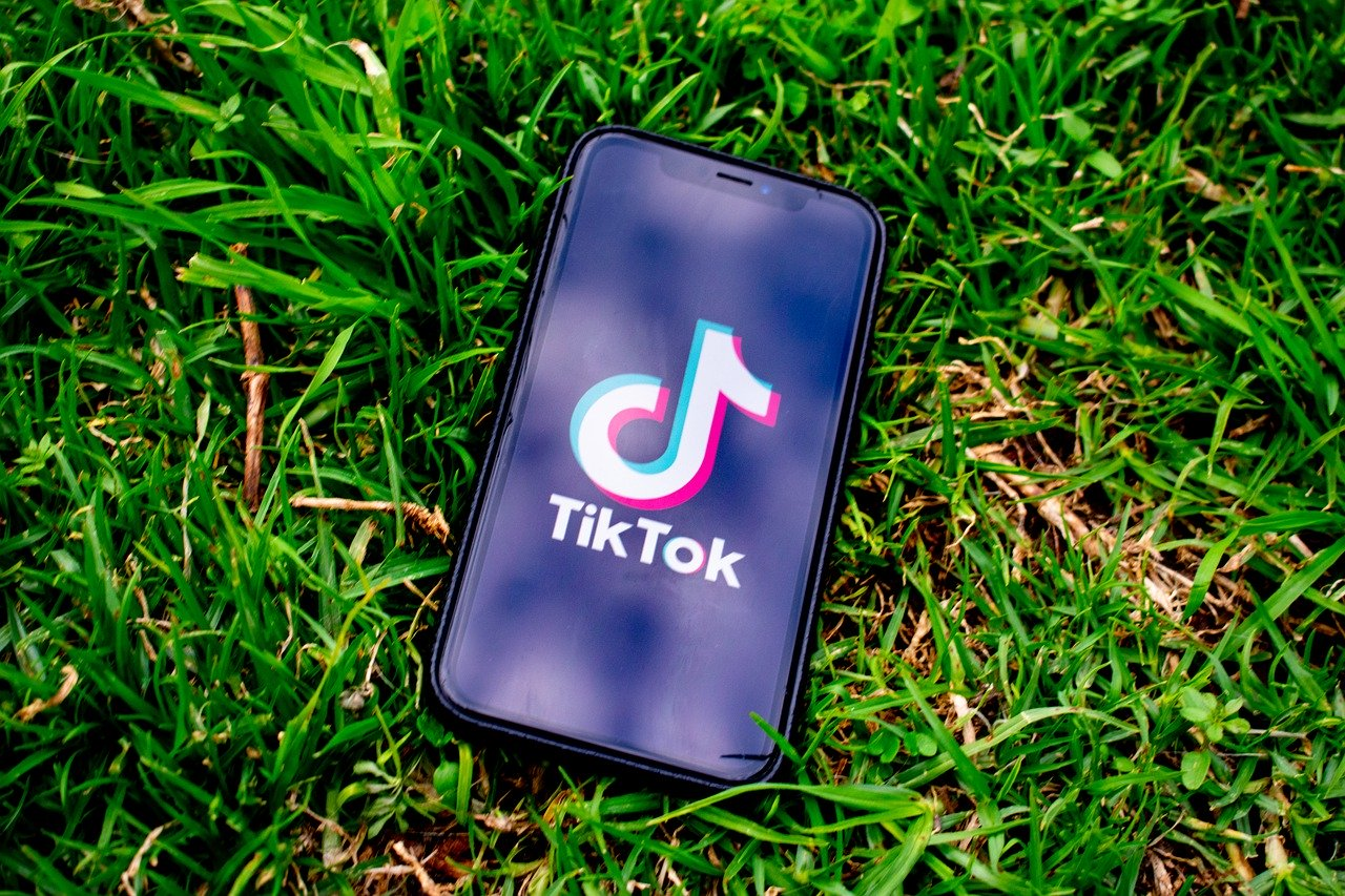 Federal judge delays TikTok ban