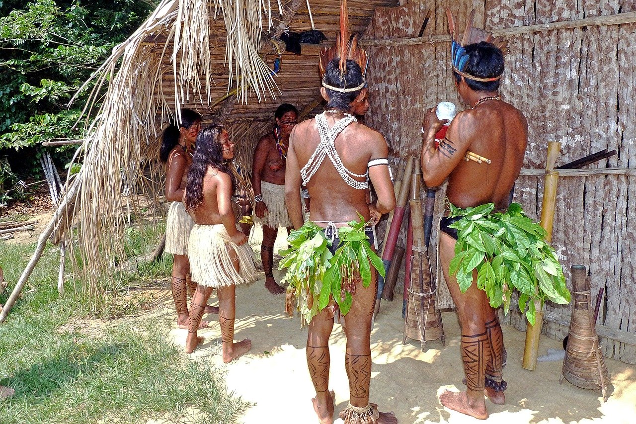 Brazil Supreme Court orders government to protect indigenous groups from COVID-19