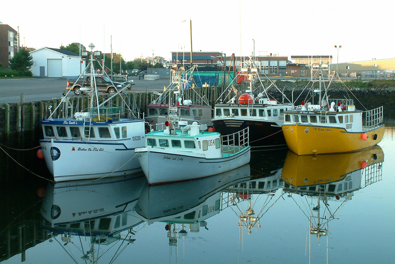 Mi'kmaw First Nations in Canada launch rights-based Nova Scotia fishery in assertion of treaty rights