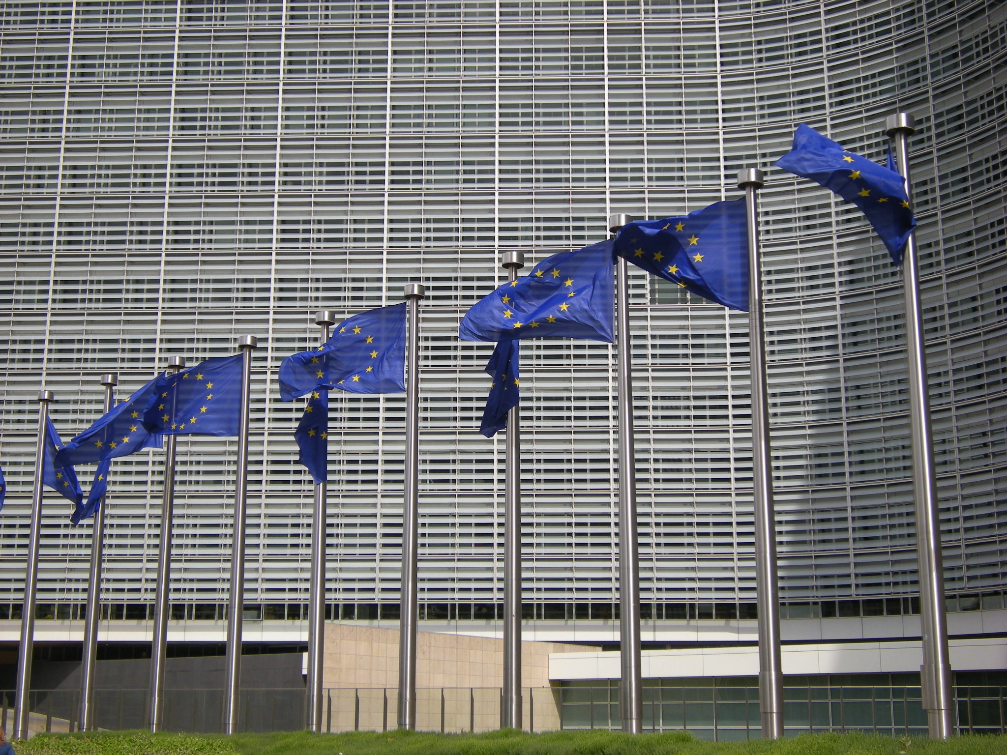 Civil rights groups call EU online terrorist law a risk to fundamental rights
