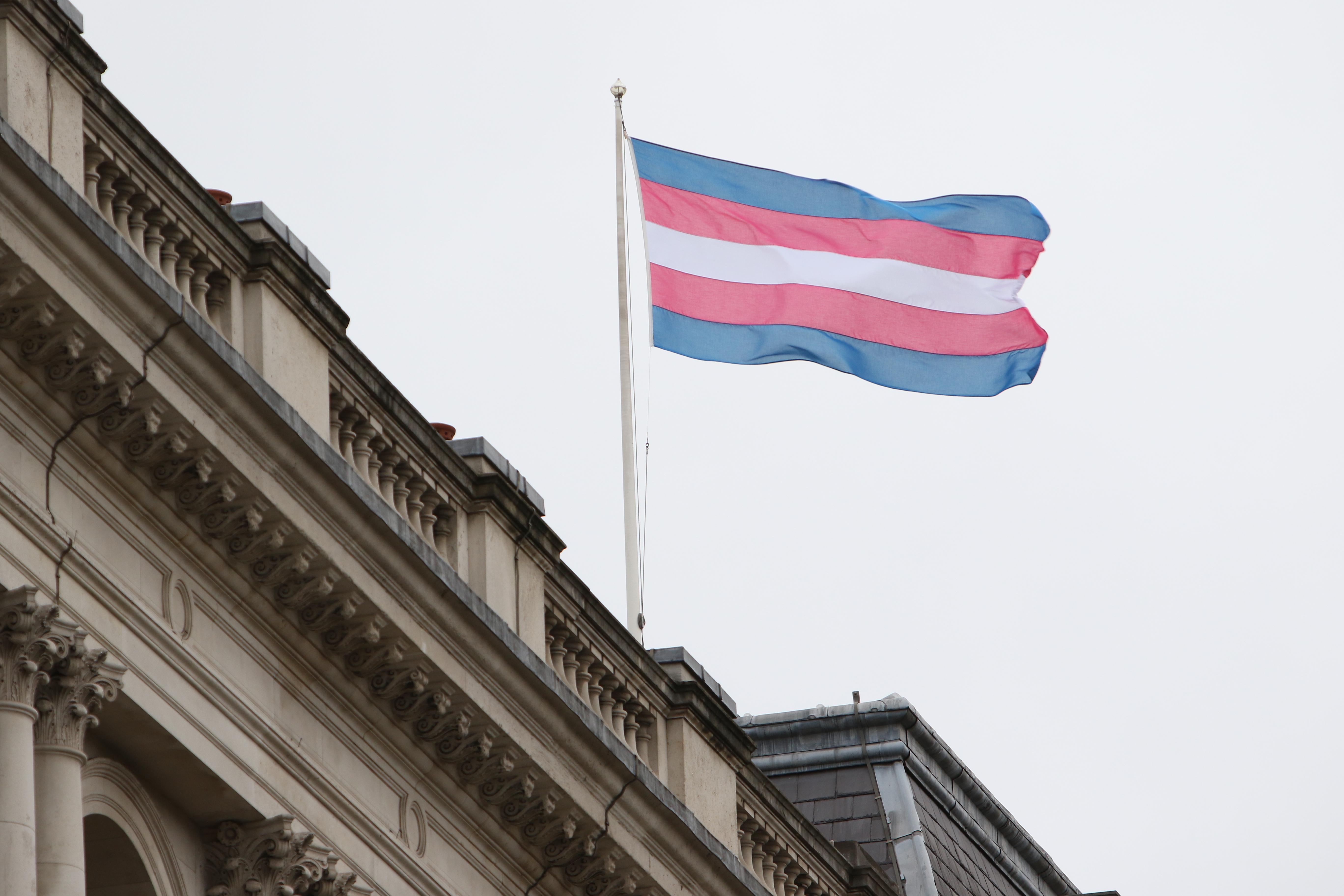 Romania Constitutional Court rules gender studies ban unconstitutional