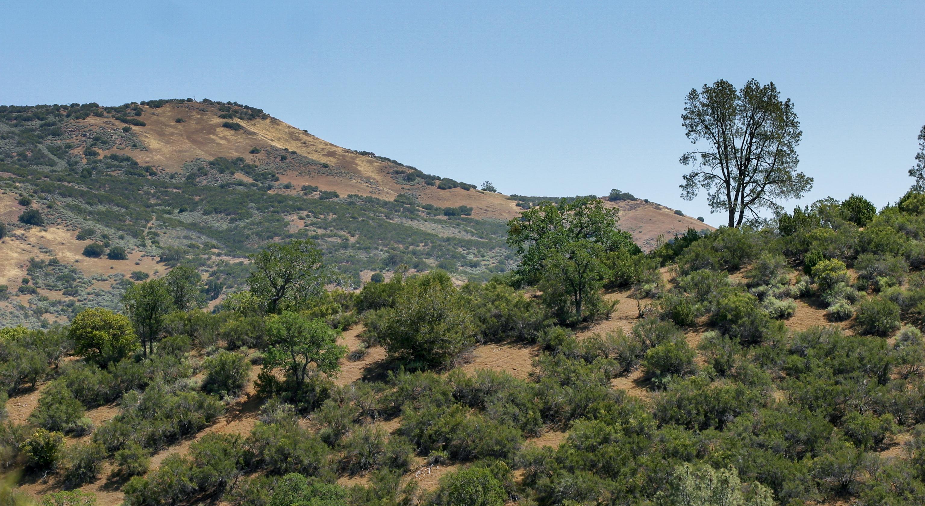 Environmental groups sue to block new California dam project