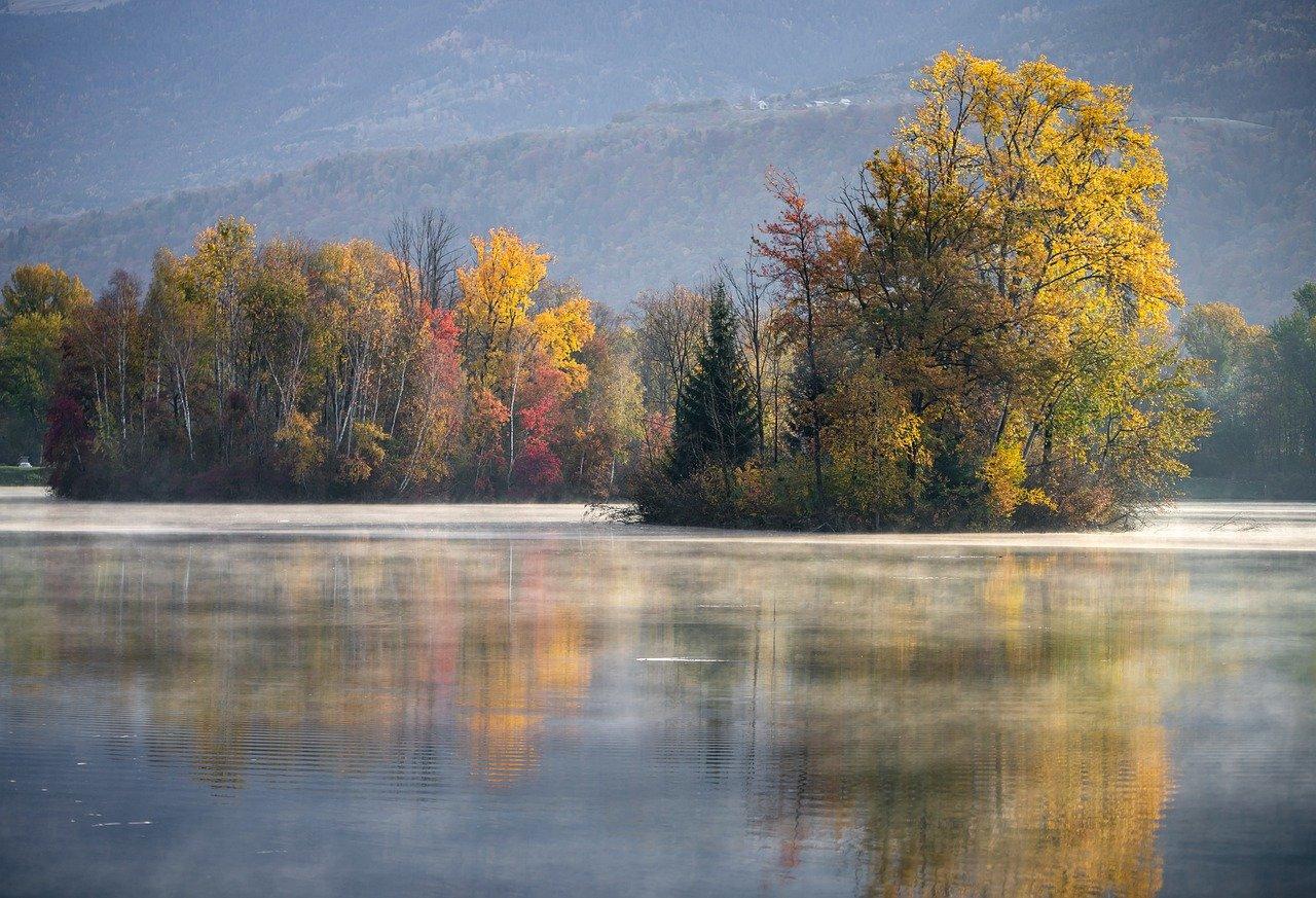 France lawmakers adopt environmental constitutional amendment