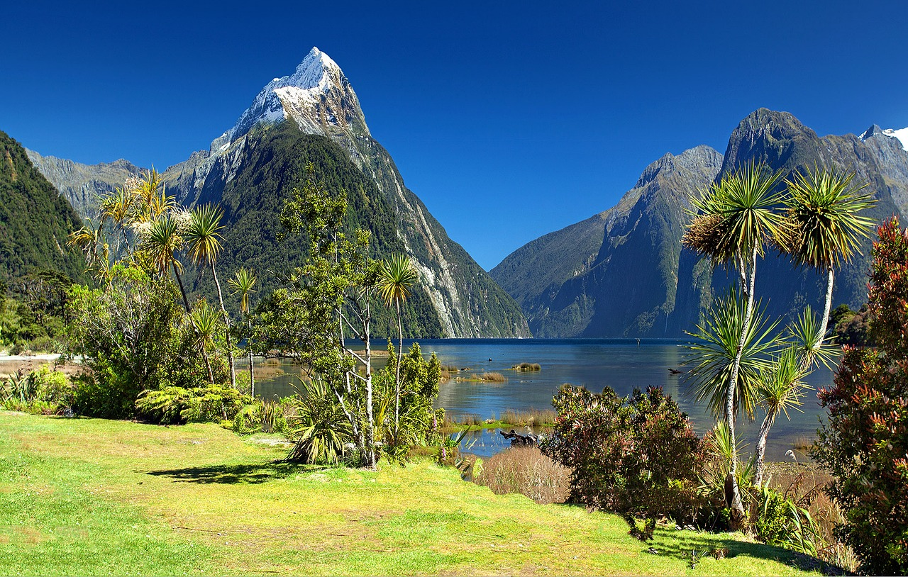 New Zealand introduces legislation to require financial sector disclosures of climate change impact