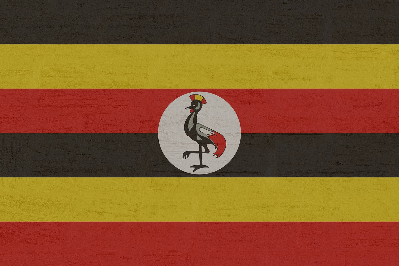 US citizen living in Uganda arrested for alleged subversion