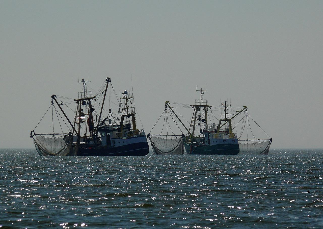 EU top court backs bloc in ban on electric pulse fishing