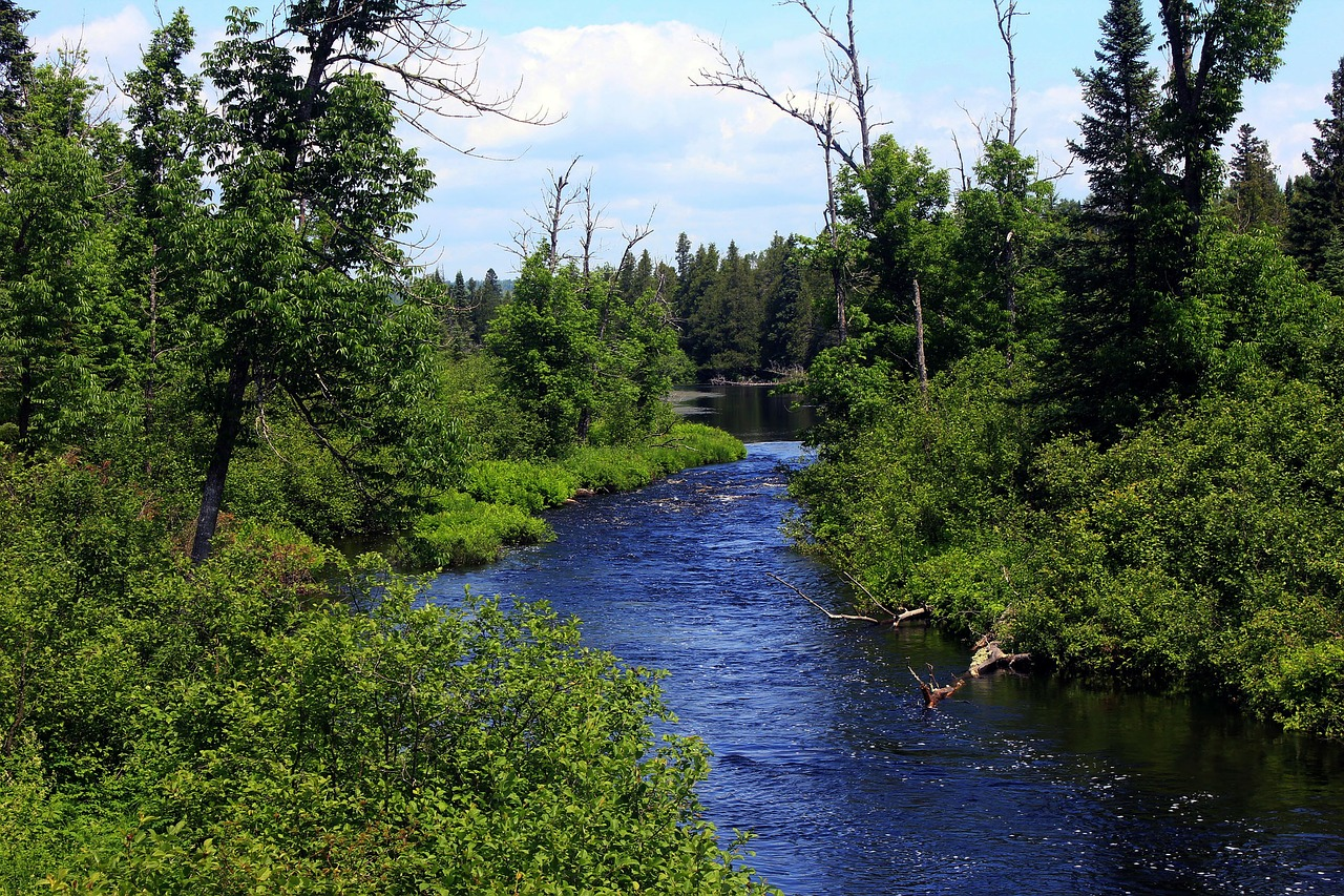 Minnesota appeals court remands state agency permit for PolyMet copper-nickel mine