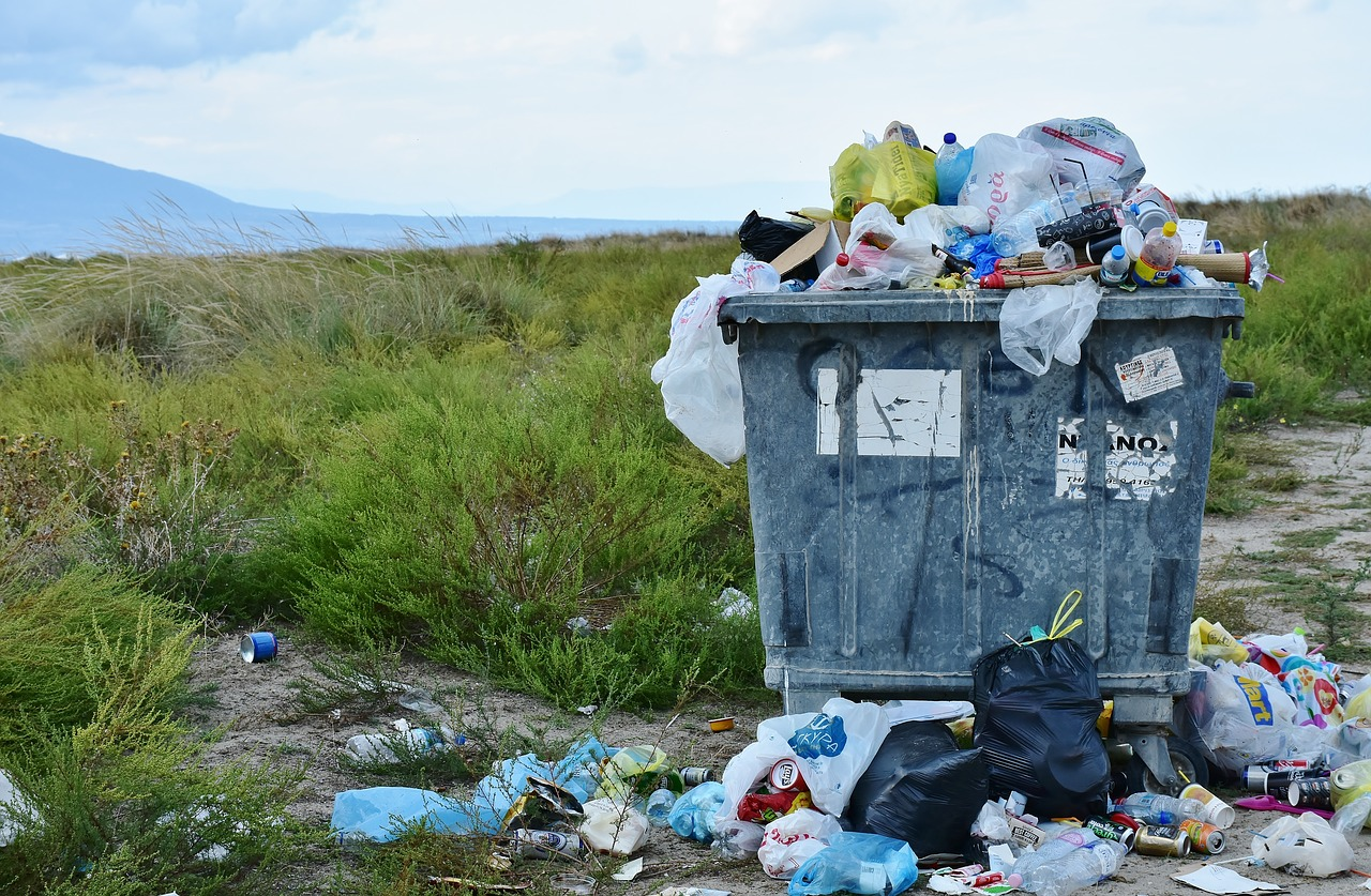 California Assembly passes bill banning the labelling of exported plastic waste as 'recycled'