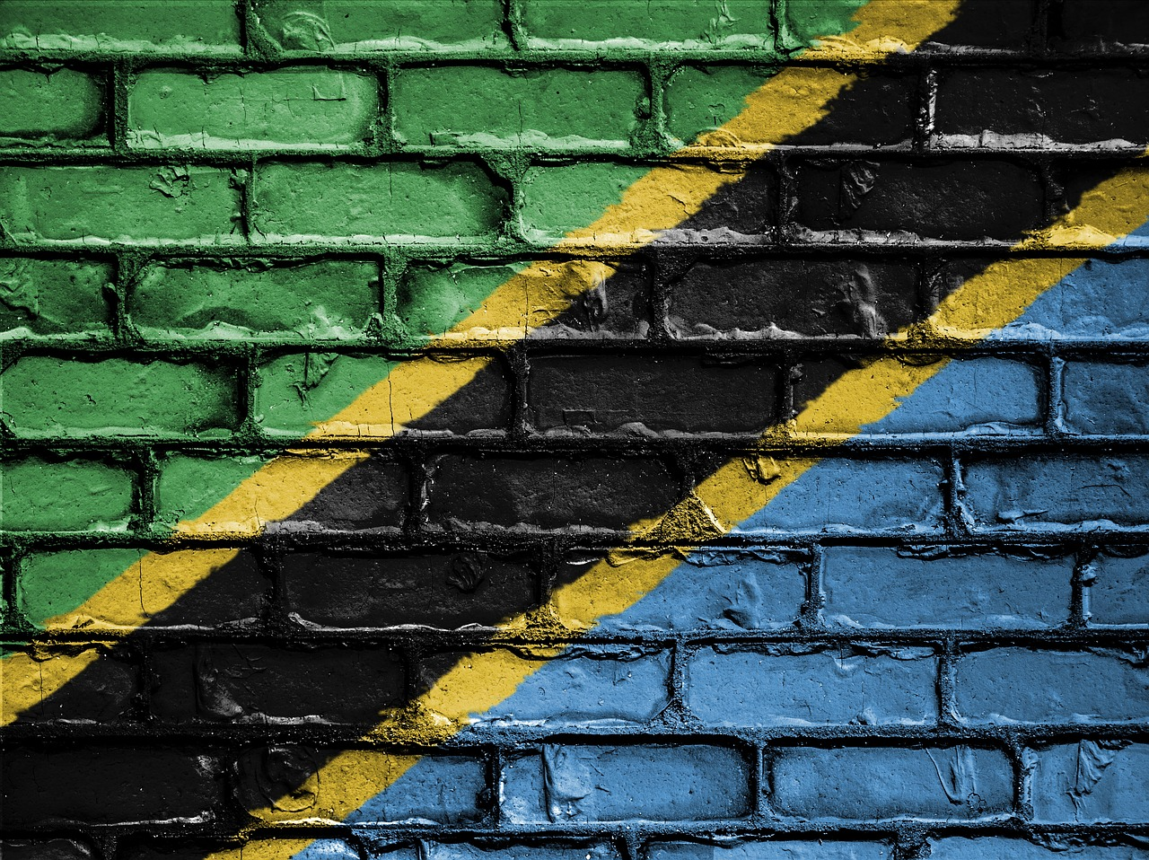 Tanzania officials suspend second newspaper in past month