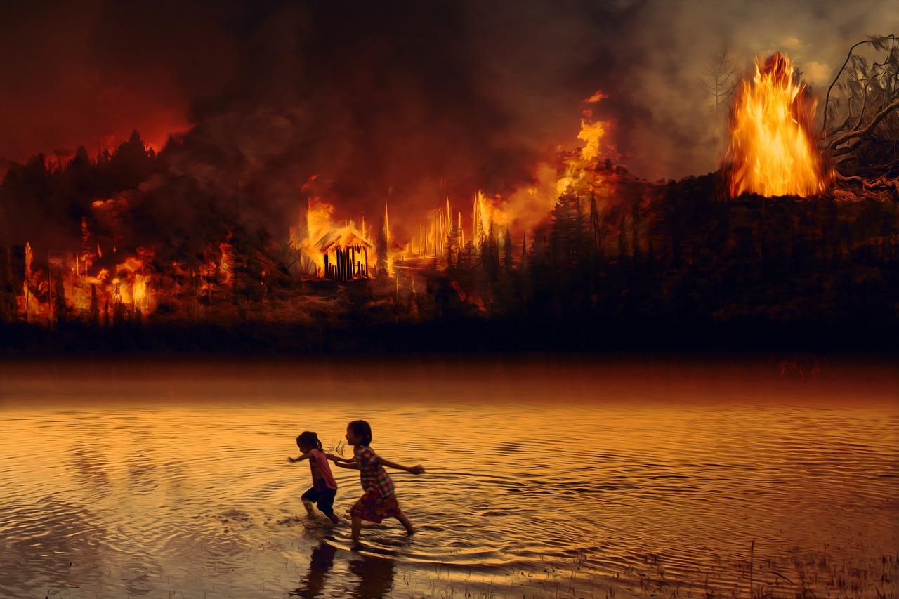 Brazil president accused of 'crimes against humanity' for rainforest destruction