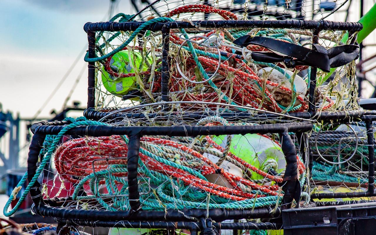 Alaska federal judge allows fish shipment from Alaska to continue